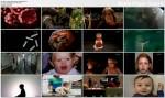 Niemowlêta. Sztuka przetrwania / The Science of Babies (2007)  PL.TVRip.XviD / Lektor PL
